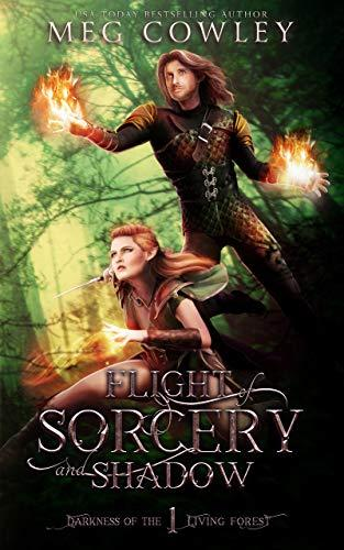 Flight of Sorcery and Shadow